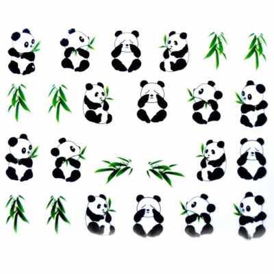 Water decals panda noir et blanc et bambou - Coloriage petit panda ...